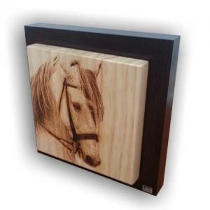 Fotograbado de un caballo